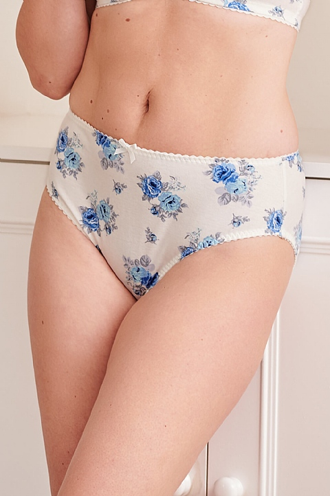 Evelyn Matching Briefs  by Nicola Jane (P022)